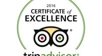 EAST SUSSEX FALCONRY  have received a certificate of EXCELLENCE 2016. Come and try our full or half day experiences, flying […]