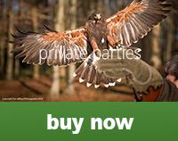 privateparties